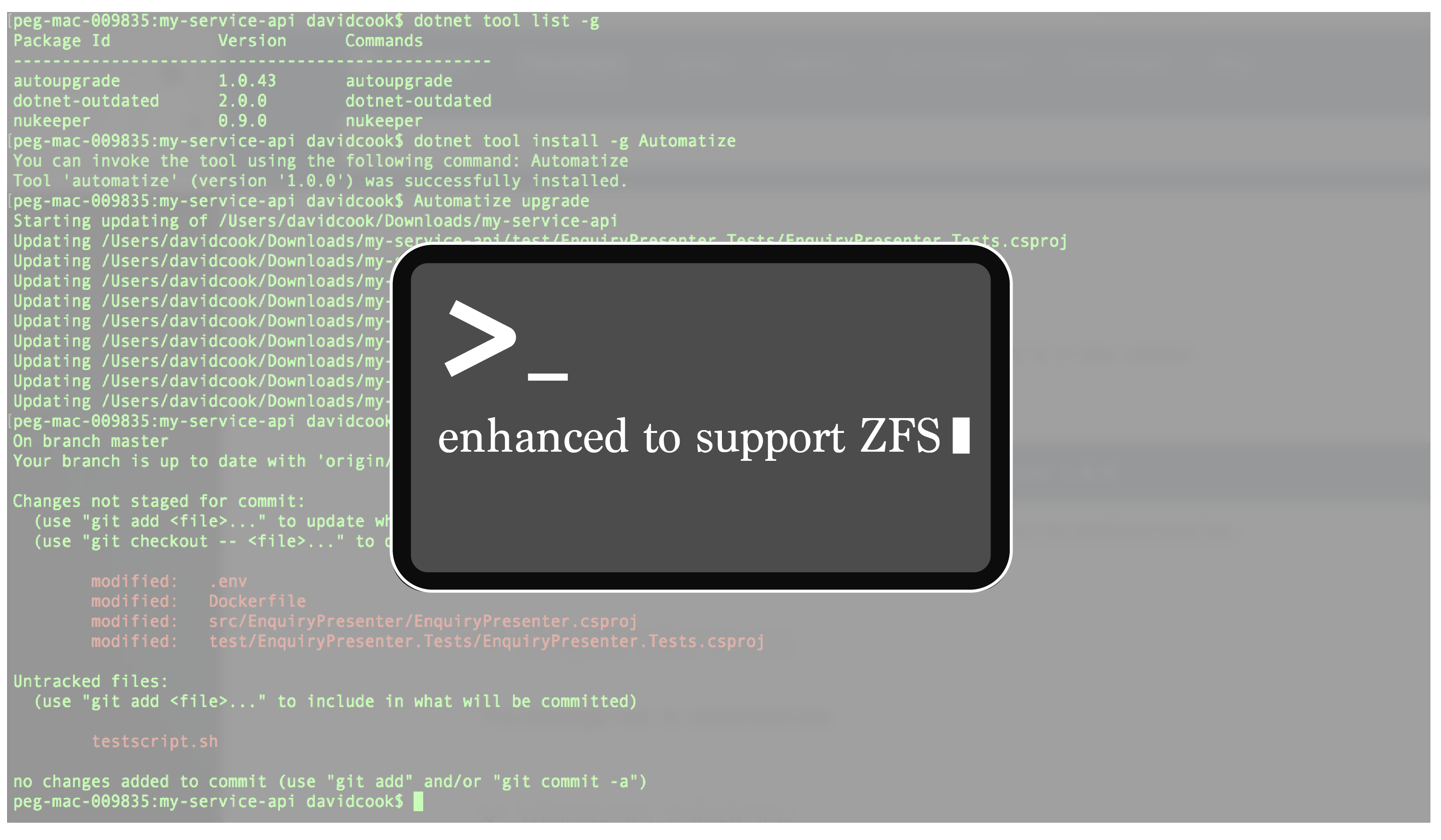 CLI enhanced for ZFS